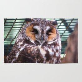Long Eared Owl II Rug