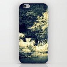 Looking In iPhone & iPod Skin