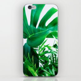 Tropical Display iPhone Skin