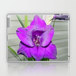 Purple Gladiola Laptop & iPad Skin