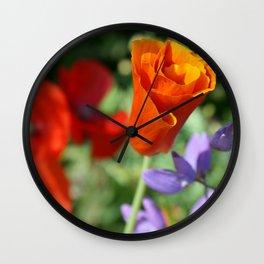 Orange Poppy Unfurling in Haines, Alaska by Mandy Ramsey Wall Clock
