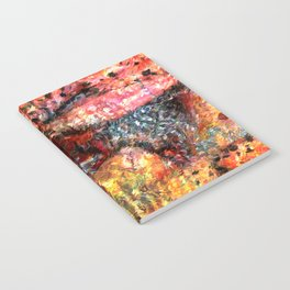 Sedimentary Rock Abstract Notebook