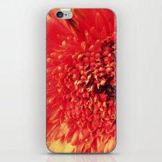 Little Red Dress iPhone & iPod Skin