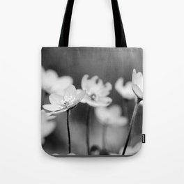 Anemone hepatica II - BW Tote Bag