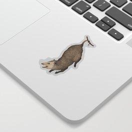 The Opossum and Peonies Sticker