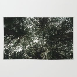 Redwood Canopy in Muir Woods, nature Rug
