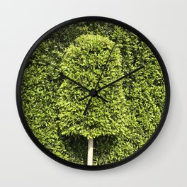 The Tree That Just Wants to Fit In Wall Clock
