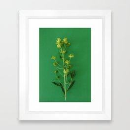 Green summer | Floral Photography Framed Art Print