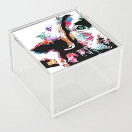 riley the lab pup Acrylic Box