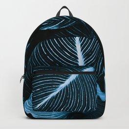 Unbridled - teal Backpack