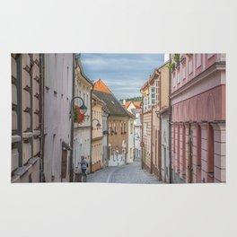 European Alley Rug