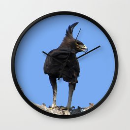 Long Crested Eagle Wall Clock