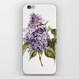 Lilac Branch iPhone Skin