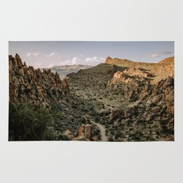 Balanced Rock Valley View in Big Bend - Landscape Photography Rug