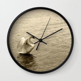 Schwan im Traunsee Wall Clock