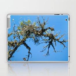 Treehuggers Laptop & iPad Skin