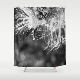 Frosted Milkweed Seed Shower Curtain