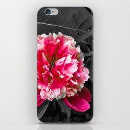 Paeony pink black and white iPhone Skin