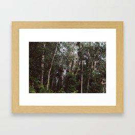 Mount Davidson Framed Art Print