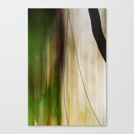 Forest, Water, Lines Canvas Print