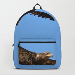 Soaring High!  -  Immature Backpack