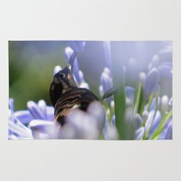 Honeybird amongst the agapanthas Rug