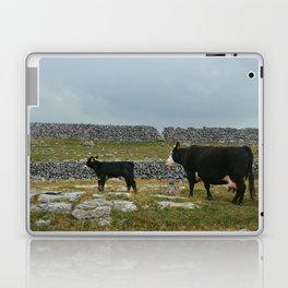 Cows in Ireland Laptop & iPad Skin