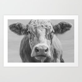 Cow Portrait Black and White Art Print