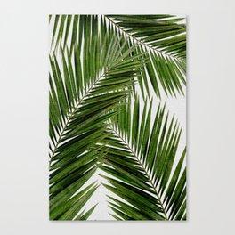 Palm Leaf III Canvas Print