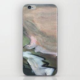 27 iPhone Skin