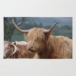 Portrait of Highland Cattle Rug
