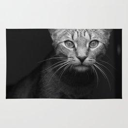 cat katz black white 4 Rug