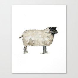 Sheep, Farmhouse Watercolor, Rustic Painting Canvas Print