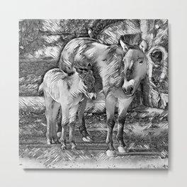 AnimalArtBW_Horse_20170801_by_JAMColorsSpecial Metal Print