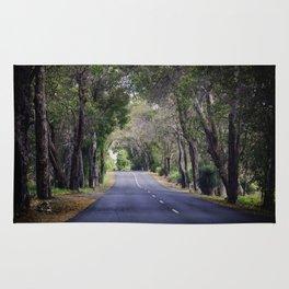 long road home Rug
