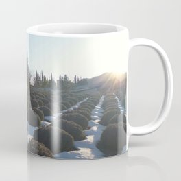 Lavender at Lake Kawagoe Coffee Mug
