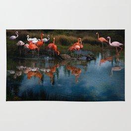 Flamingo Convention Rug