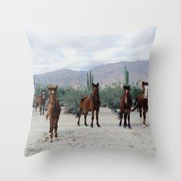 Bahía de los Ángeles Wild Horses Throw Pillow