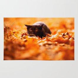 Autumn cat Rug