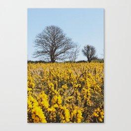 Two's Company Canvas Print