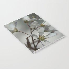 The fragile start of spring Notebook