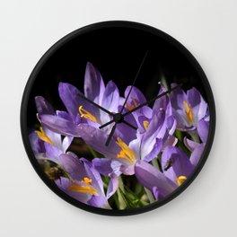 lilac crocus on black Wall Clock