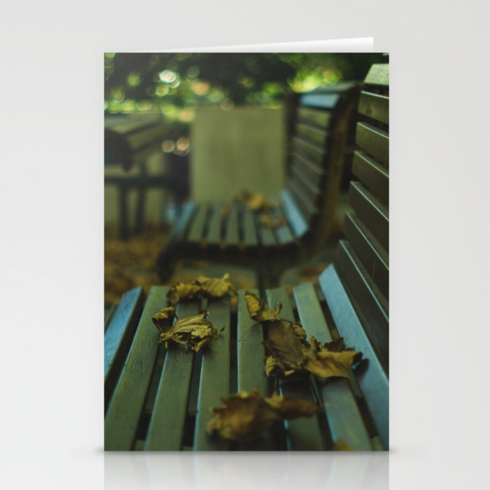 Winter's Left Over  Stationery Cards
