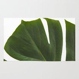 Minimal capture of monstera leaf Rug