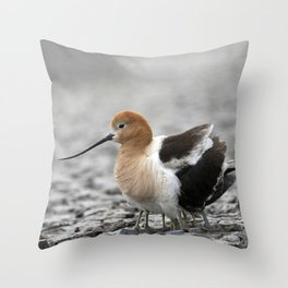 American Avocet mother protecting babies Throw Pillow