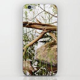 Deadwood on the beach iPhone Skin