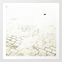Birdstreet Art Print