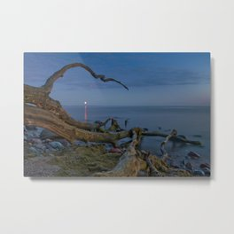 Branched Seascape Metal Print
