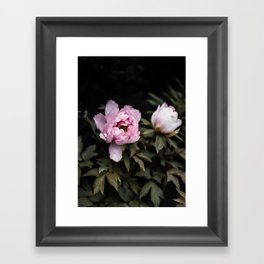 Flowers -a48 Framed Art Print