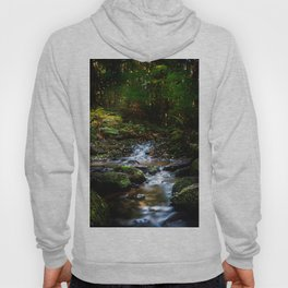 Reality lost Hoody